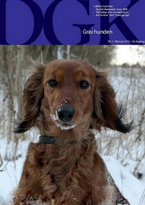 "DGK Gravhunden - The Danish Dachshund Club Magazine, ""Clay to Collector"""